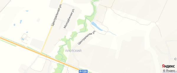Карта деревни Староселья в Брянской области с улицами и номерами домов
