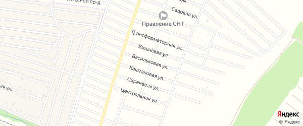 Территория сдт Хотылево на карте поселка Нетьинки с номерами домов