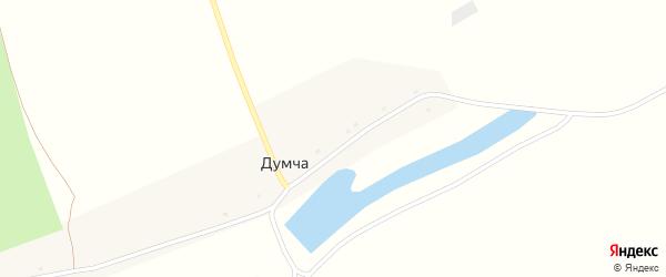 Центральная улица на карте поселка Думчи с номерами домов