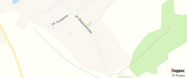 Улица Ворошилова на карте деревни Меркульево с номерами домов