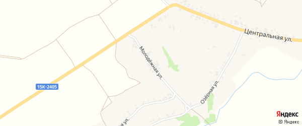 Молодежная улица на карте села Алешковичей с номерами домов