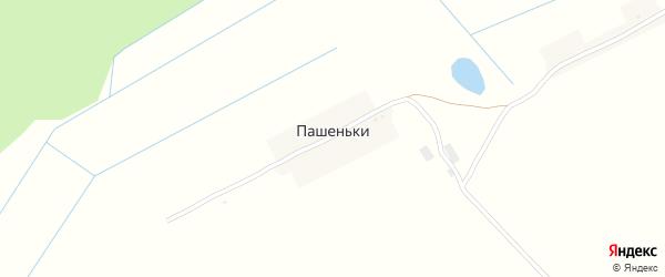 Центральная улица на карте поселка Пашеньки с номерами домов
