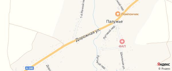 Дорожная улица на карте села Палужьего с номерами домов