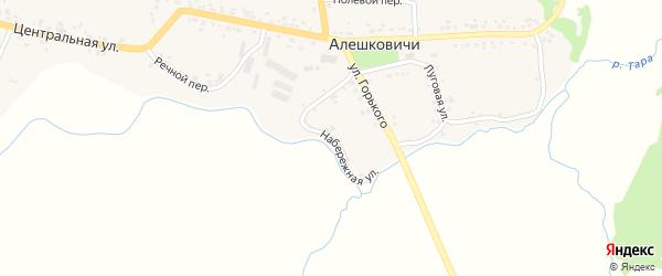 Набережная улица на карте села Алешковичей с номерами домов