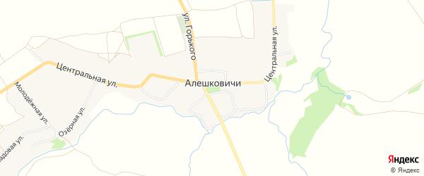 Карта села Алешковичей в Брянской области с улицами и номерами домов