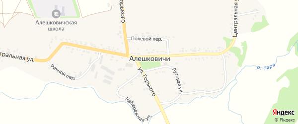 Речной переулок на карте села Алешковичей с номерами домов