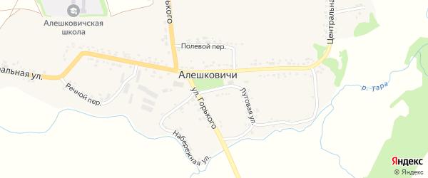 Советский переулок на карте села Алешковичей с номерами домов