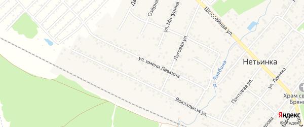 Улица Левкина на карте поселка Нетьинки с номерами домов