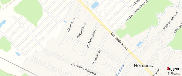 Улица Мичурина на карте поселка Нетьинки с номерами домов