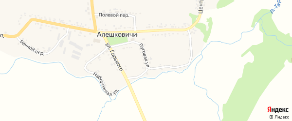 Луговая улица на карте села Алешковичей с номерами домов