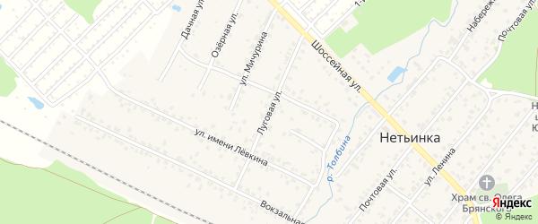 Луговая улица на карте поселка Нетьинки с номерами домов