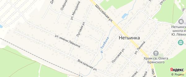 Переулок Мичурина на карте поселка Нетьинки с номерами домов