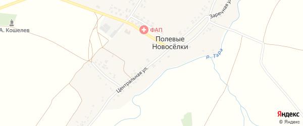 Центральная улица на карте села Полевые Новоселки с номерами домов