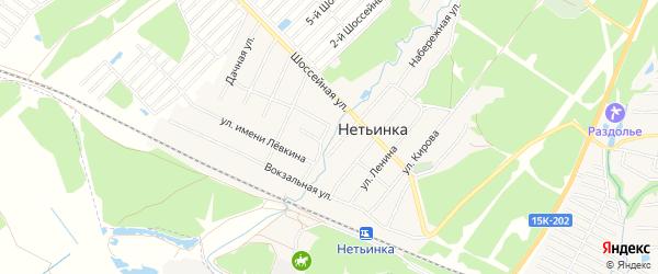 Карта поселка Нетьинки в Брянской области с улицами и номерами домов