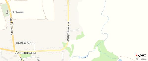 Центральный переулок на карте села Алешковичей с номерами домов