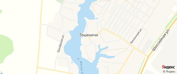Карта деревни Тешенечи в Брянской области с улицами и номерами домов