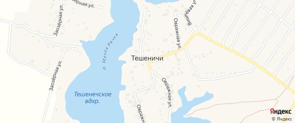 Тепличная улица на карте деревни Тешенечи с номерами домов