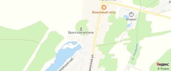 Толвинский переулок на карте деревни Толвинки с номерами домов