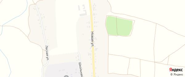 Новая улица на карте села Негино с номерами домов