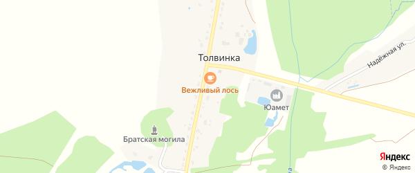 Толвинская улица на карте деревни Толвинки с номерами домов