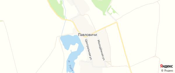 Карта села Павловичей в Брянской области с улицами и номерами домов
