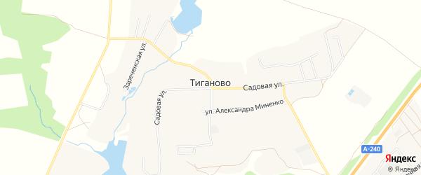 Карта деревни Тиганово в Брянской области с улицами и номерами домов