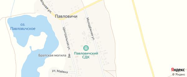 Молодежная улица на карте села Павловичей с номерами домов