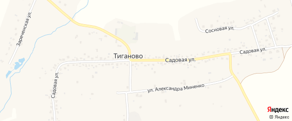 Территория 5 резь (поле за теплицами) на карте деревни Тиганово с номерами домов