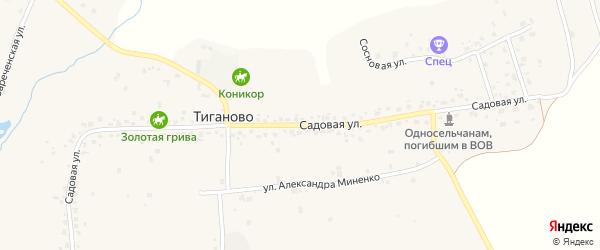 Садовая улица на карте деревни Тиганово с номерами домов