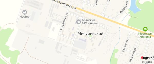 Березовая улица на карте Мичуринского поселка с номерами домов