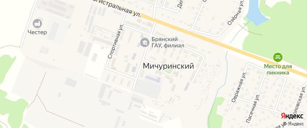 Выставочная улица на карте Мичуринского поселка с номерами домов