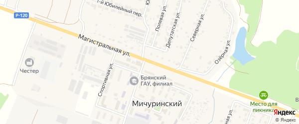 Магистральная улица на карте Мичуринского поселка с номерами домов