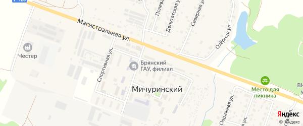 Молодежная улица на карте Мичуринского поселка с номерами домов