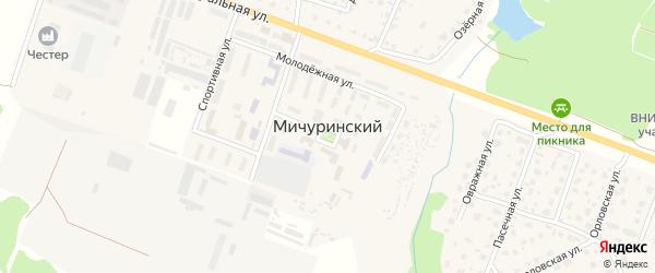 Территория ГСК Мичуринский (район стадиона) на карте Мичуринского поселка с номерами домов