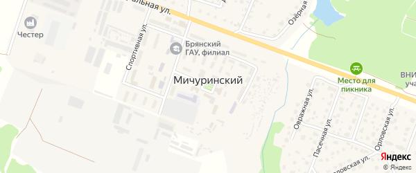 Территория ГСК Мичуринский (район автотрассы) на карте Мичуринского поселка с номерами домов