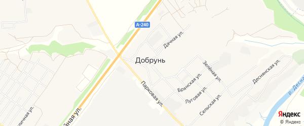 Карта деревни Добруни в Брянской области с улицами и номерами домов