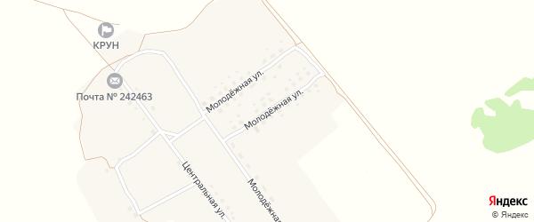 Молодежная улица на карте деревни Подлесные Новоселки с номерами домов