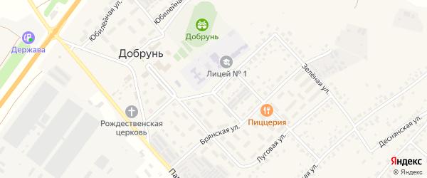 Пионерская улица на карте деревни Добруни с номерами домов