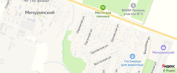 Пасечная улица на карте Мичуринского поселка с номерами домов