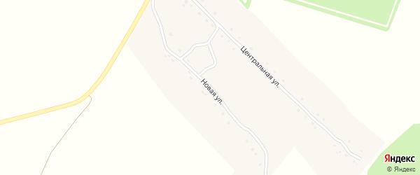 Новая улица на карте деревни Подлесные Новоселки с номерами домов