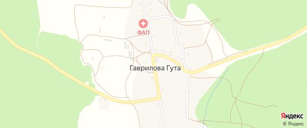 Центральная улица на карте деревни Гавриловой Гуты с номерами домов
