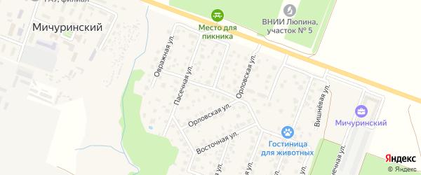 Московская улица на карте Мичуринского поселка с номерами домов
