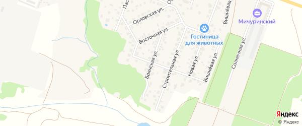 Брянская улица на карте Мичуринского поселка с номерами домов