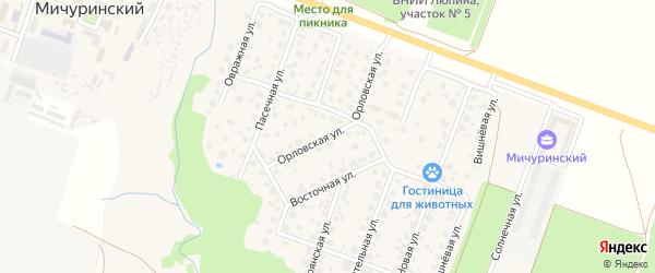 Орловская улица на карте Мичуринского поселка с номерами домов