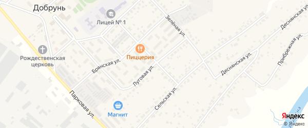 Луговая улица на карте деревни Добруни с номерами домов