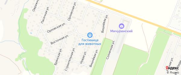 Новая улица на карте Мичуринского поселка с номерами домов