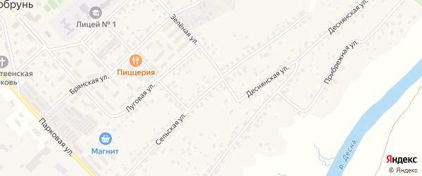Сельская улица на карте деревни Добруни с номерами домов