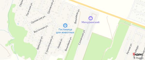 Вишневая улица на карте Мичуринского поселка с номерами домов