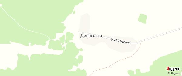 Улица Мичурина на карте деревни Денисовки с номерами домов