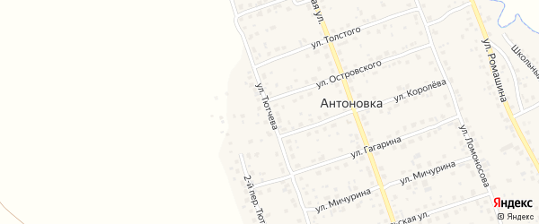 Переулок 2-й Тютчева на карте деревни Антоновки с номерами домов